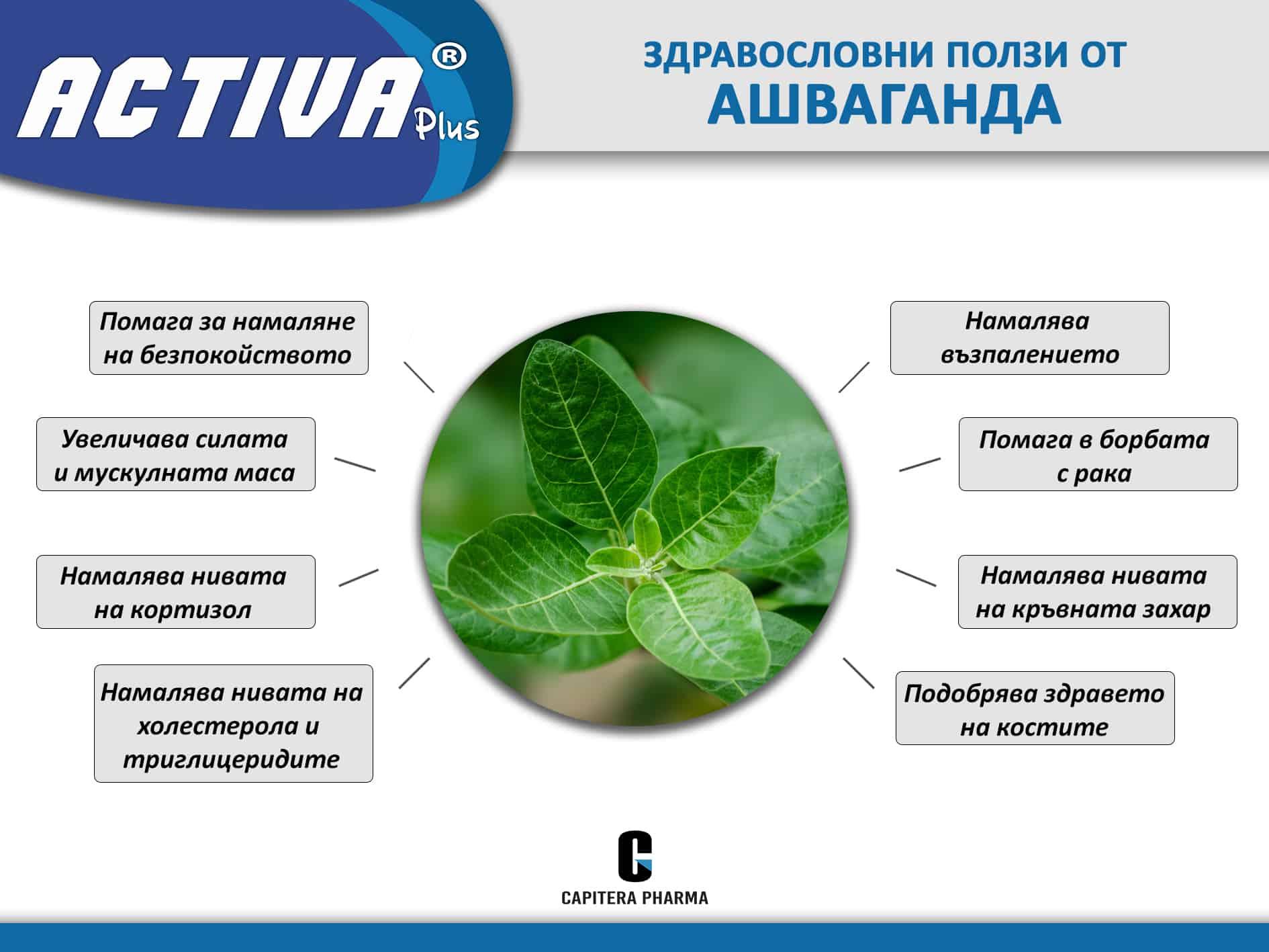 Benefits Ashwagandha bg